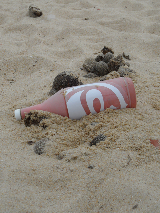 Dreams Beach Clean Up 2012